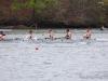 2012_darrell_winslow_regatta_1518