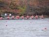 2012_darrell_winslow_regatta_1634