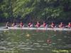 2012_ted_phoenix_regatta_0279