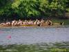2012_ted_phoenix_regatta_0841