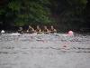 va_champs_2011_0882